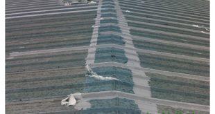 Chống dột mái tôn tại quận 2